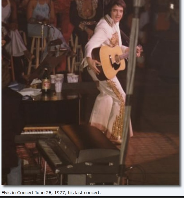 Elvis photo from last concert - rare